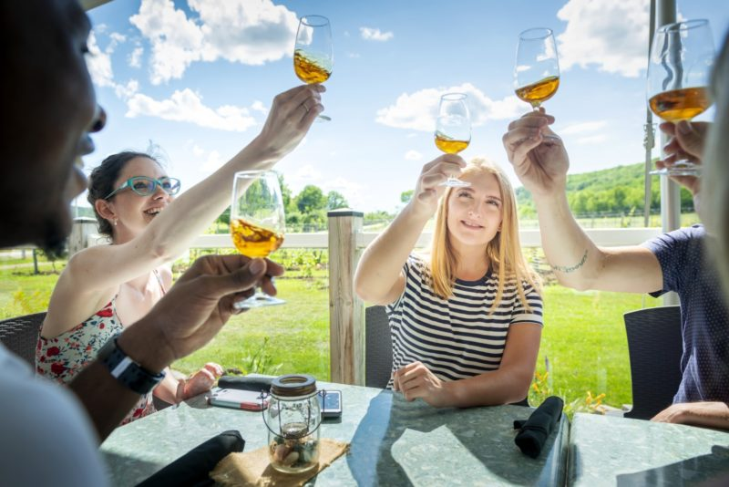 four people cheers with orange coloured wine on a patio on a sunny day